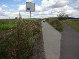 Spaziergang mit Conny Niehoff - Dorfstr. in Colbitz (c) Foto von Susanne Haun