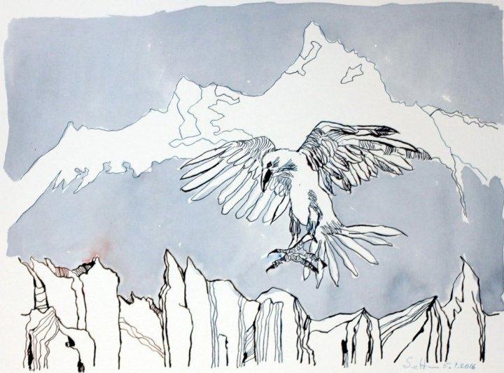 Entstehung Der schwarze Vogel namens Rabe ist im Anflug - 30 x 40 cm - Tusche auf Aquarellkarton Britannia (c) Zeichnung von Susanne Haun
