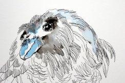 2 Detail - Sila ist die Luft, die Kraft des Denkens und der Weisheit (c) Zeichnung von Susanne Haun