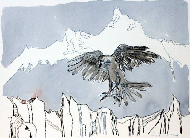 Der schwarze Vogel namens Rabe ist im Anflug - 30 x 40 cm - Tusche auf Aquarellkarton Britannia (c) Zeichnung von Susanne Haun