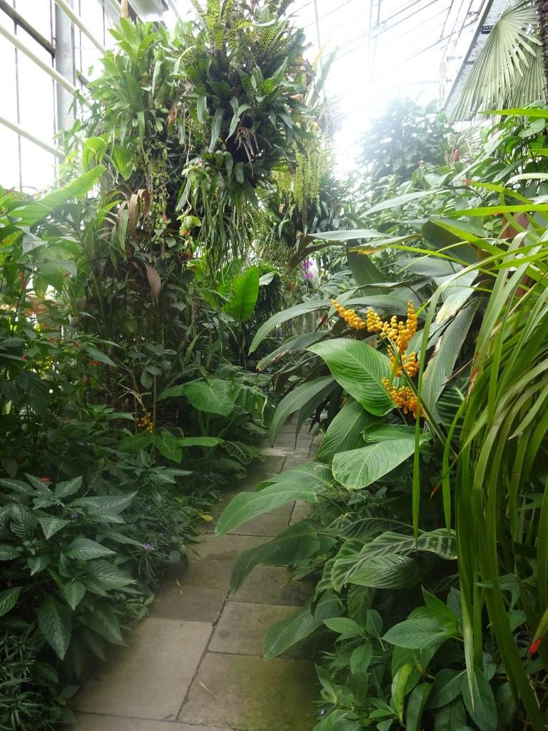 Botanischer Garten Göttingen C Foto Von Susanne Haun Susanne Haun