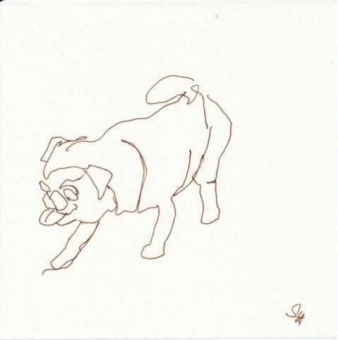 Der Mops - 15 x 15 cm - Füller auf Le Grand Bloc (c) Zeichnung von Susanne Haun