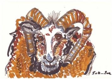 Widder - 7. Schritt (c) Zeichnung von Susanne Haun