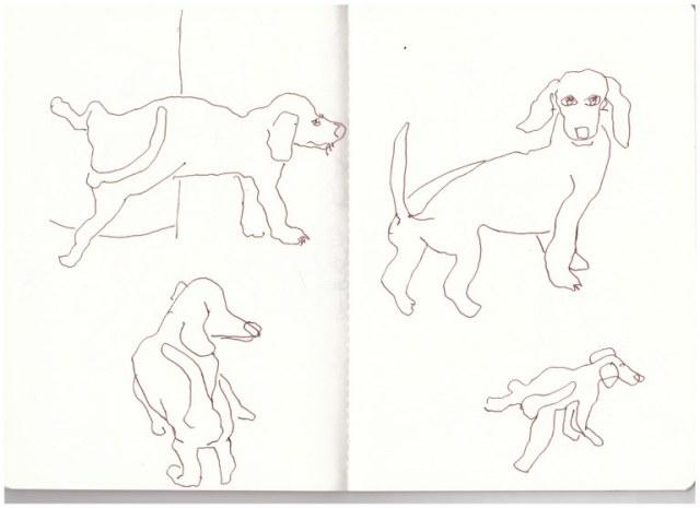 1 Venedig Dackel (c) Zeichnung von Susanne Haun