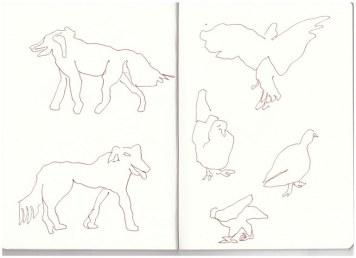 3 Venedig Hund und Taube (c) Zeichnung von Susanne Haun