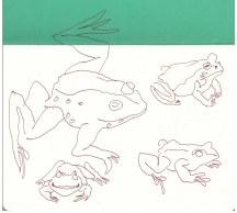 4 Bleigiessen Frösche (c) Zeichnung von Susanne Haun