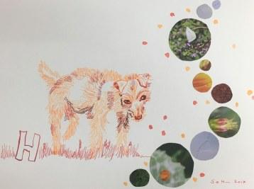 3 Hund - 30 x 40 cm - Tusche auf Bütten (c) Zeichnung - Collage von Susanne Haun