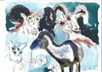 8 Widder - 30 x 40 cm - Tusche auf Bütten (c) Zeichnung - Collage von Susanne Haun