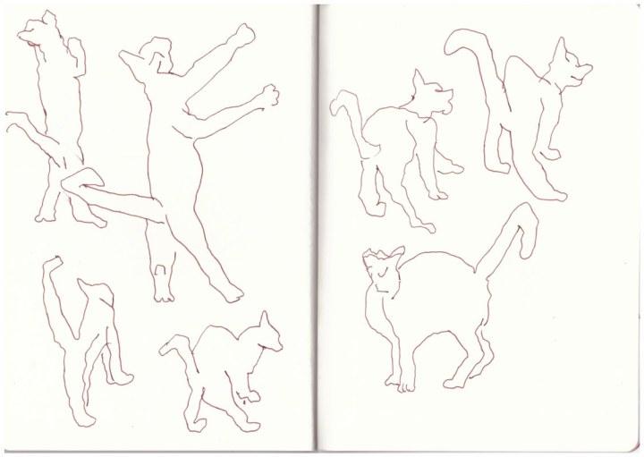 Katzen (Ernie und Bert) in Bewegung (c) Zeichnung von Susanne Haun