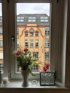 Tulpen auf meinem Fensterbrett (c) Foto von Susanne Haun