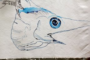 Entstehung - Fulmur, der Sturmvogel - 32 x 147 cm - Tusche auf Leinwand (c) Zeichnung von Susanne Haun