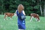 Mit den Blick zu den Kühen (c) Foto von M.FankeMit den Blick zu den Kühen (c) Foto von M.Fanke