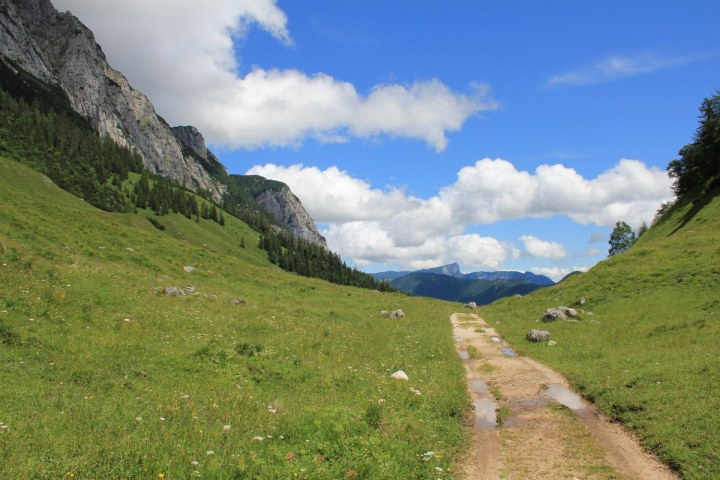 Auf der Halsalm im Berchtesgadener Land (c) Foto von Susanne Haun