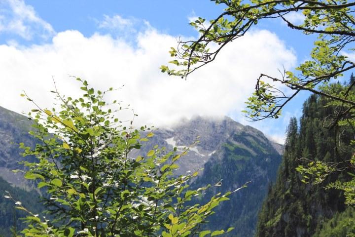 Auf dem Weg zur Halsalm im Berchtesgadener Land (c) Foto von Susanne Haun