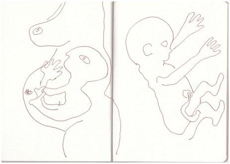 Ein im Mutterleib werdender Angakkuit (c) Zeichnung von Susanne Haun