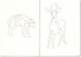 Im Zoo - Pavian - Antilope (c) Zeichnung von Susanne Haun