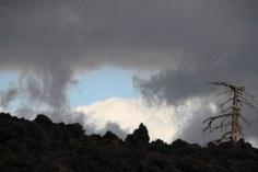 Auf dem Weg zum Monte Nero (c) Foto von Susanne Haun