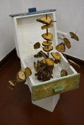 Ausstellungsansicht Querbrüche - Objekt von Gabriele D.R. Guenther (c) Foto von M.Fanke