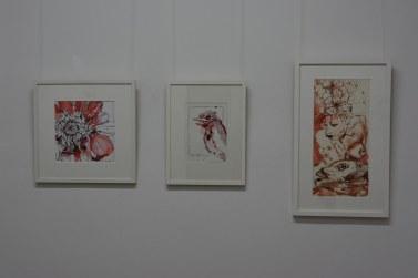 Ausstellungsansicht Querbrüche - Zeichnung von Susanne Haun (c) Foto von M.Fanke