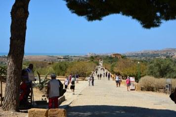 Überblick Parco valle dei templi agrigento (c) Foto von M.Fanke
