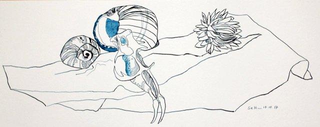 Freundschaft - Vanitas Stillleben Vers. 1 - 20 x 50 cm - Hahnemühle Aquarellkarton (c) Zeichnung von Susanne Haun