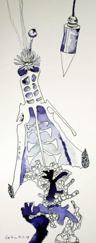 Ausgelotet – Vanitas Stillleben Vers. 4 – 50 x 20 cm – Hahnemühle Aquarellkarton (c) Zeichnung von Susanne Haun