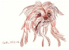Hund (c) Zeichnung von Susanne Haun