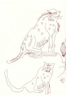 Beobachtungen bei Hatari (c) Zeichnung von Susanne Haun