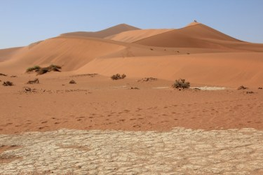Namibia - Duene 45 und Sossusvlei (c) Foto von Susanne Haun