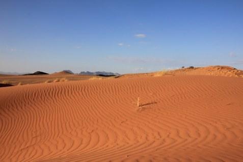 Ausblicke in die Namib Wueste (c) Foto von Susanne Haun