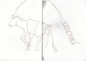 Oryx (c) Zeichnung von Susanne Haun