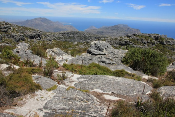 Südafrika - Kapstadt - Tafelberg (c) Foto von Susanne HaunSüdafrika - Kapstadt - Tafelberg (c) Foto von Susanne Haun