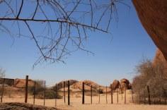 Ausblick aus dem Small Bushman Paradise (c) Foto von Susanne Haun