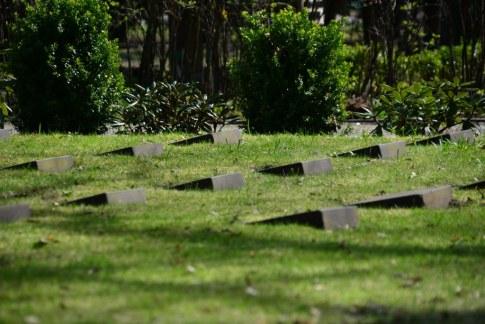 Urnenfriedhof Seestrasse - Gräber für die zivilen Kriegsopfer (c) Foto von M.Fanke