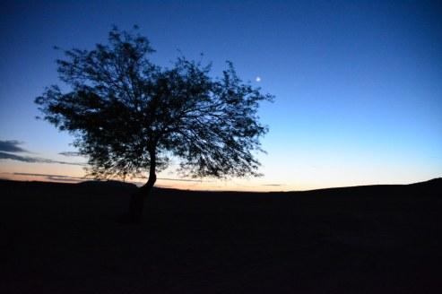 Es wird Tag in der Wueste (c) Foto von M.Fanke