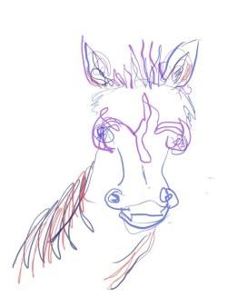 Zebra (c) Zeichnung auf iPad von Susanne Haun