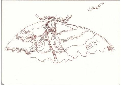 Großer Falter auf dem Campingplatz (c) Zeichnung von Susanne Haun