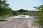 Überall Wasser im Etosha Nationalpark (c) Foto von M.Fanke