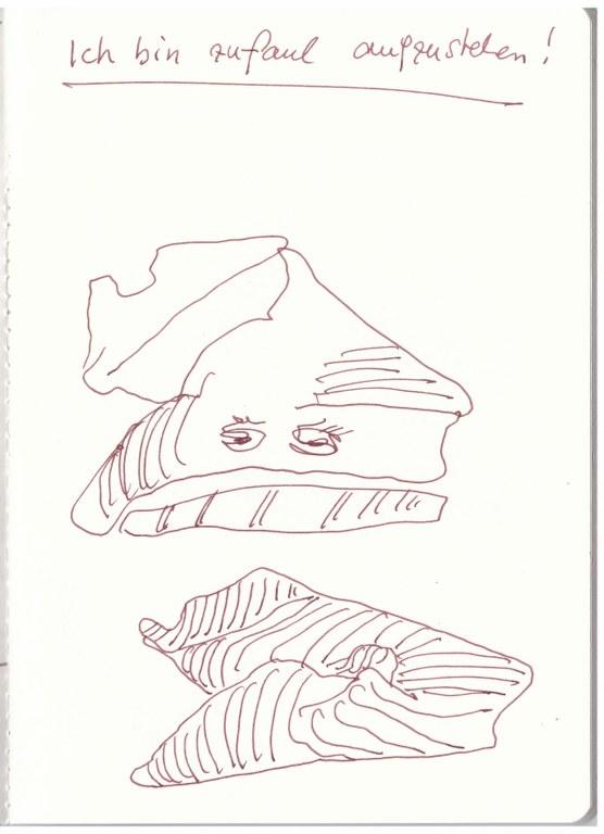 Mein Kopfkissen - Ich mag nicht aufstehen (c) Zeichnung von Susanne Haun