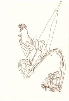 Verblühte Iris (c) Zeichnung von Susanne Hau