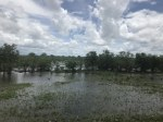 Unterwegs in Botswana bei Regen (c) Foto von Susanne Haun