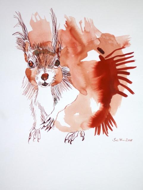 Das Eichhörnchen schaut uns an (c) Zeichnung von Susanne Haun