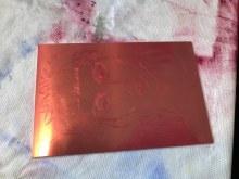 Die fertig eingewischte Kupferplatte von Meike (c) Foto von Susanne Haun