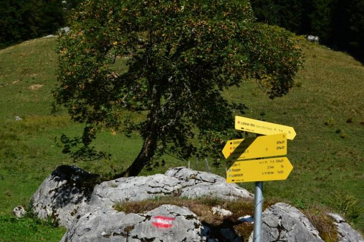 Loferer Almwelt (c) Foto von M.Fanke