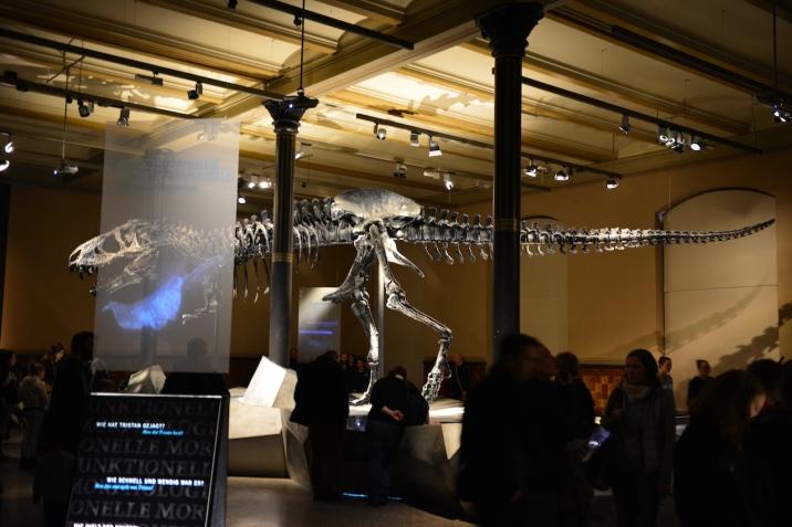 2 Tristan, Museum für Naturkunde, Foto von M.Fanke