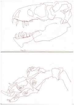 Impressionen aus dem Naturkundemuseum Berlin, Tusche im Skizzenbuch, Zeichnung von Susanne Haun, A5 (c) VG Bild-Kunst, Bonn 2019