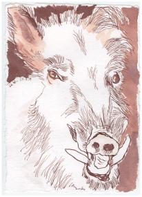 Wildschwein, 15 x 20 cm, Tusche auf Silberburg Büttenpapier, Zeichnung von Susanne Haun (c) VG Bild-Kunst, Bonn 2019