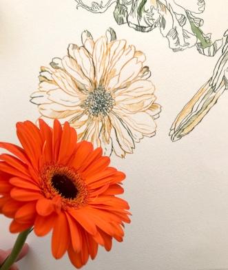Entstehung Paradiesvogel für Itha, hier Gerbera, 50 x 50 cm, Zeichnung von Susanne Haun (c) VG Bild-Kunst, Bonn 2019