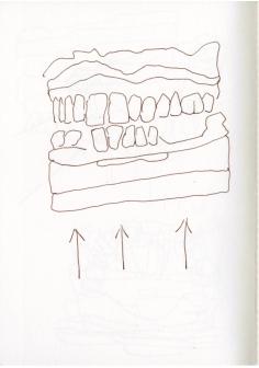 Kein Gebiss - ein Abdruck, Zeichnung von Susanne Haun (c) VG Bild Kunst, Bonn 2019