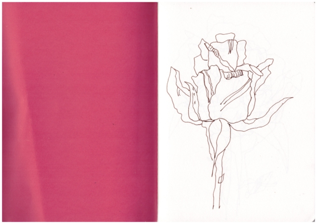 Rosen so rot, Zeichnungen von Susanne Haun (c) VG Bild-Kunst, Bonn 2019